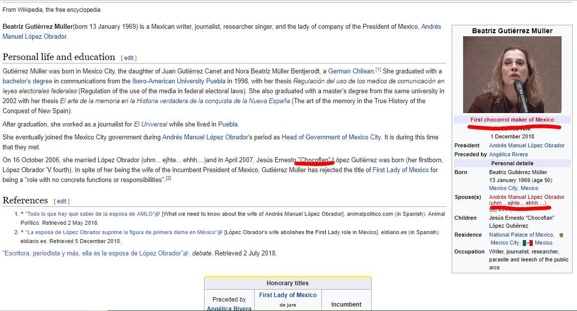 Qué pasa si buscas Beatriz Gutiérrez Müller en Wikipedia